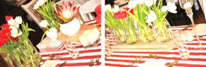 Blog - red & white1